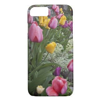 USA, Washington, Seabeck. Tulips line garden iPhone 7 Case