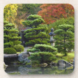 USA, Washington, Seattle, Arboretum, Japanese Beverage Coaster