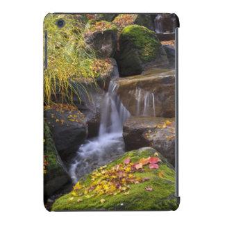 USA, Washington, Seattle iPad Mini Cover