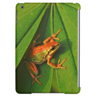 USA, Washington, Seattle, Discovery Park 2 iPad Air Covers