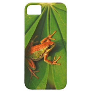 USA, Washington, Seattle, Discovery Park 2 iPhone SE/5/5s Case