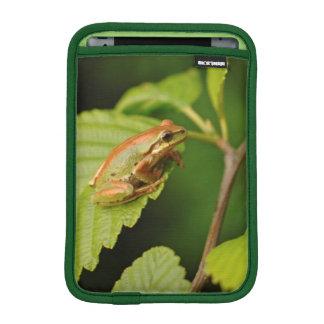 USA, Washington, Seattle, Discovery Park Sleeve For iPad Mini