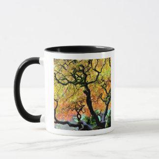 USA, Washington, Seattle, Kubota Garden. Mug