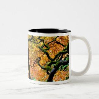 USA, Washington, Seattle, Kubota Garden. Two-Tone Coffee Mug