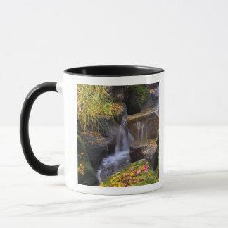USA, Washington, Seattle Mug