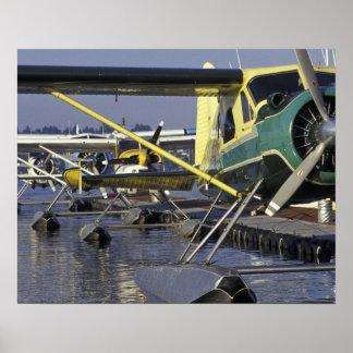 USA, Washington, Seattle, Seaplanes docked on Poster