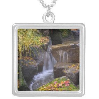 USA, Washington, Seattle Silver Plated Necklace
