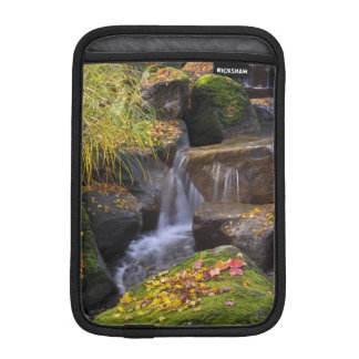 USA, Washington, Seattle Sleeve For iPad Mini