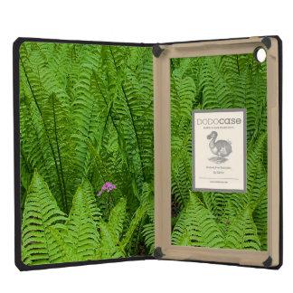 USA, Washington, Seattle, Washington Park iPad Mini Retina Covers