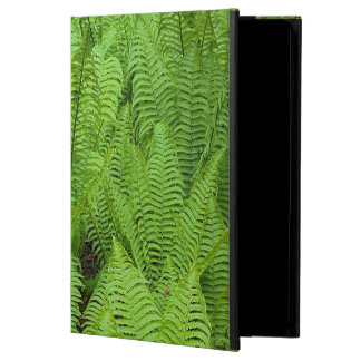 USA, Washington, Seattle, Washington Park Case For iPad Air