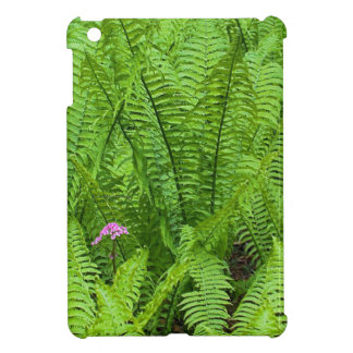 USA, Washington, Seattle, Washington Park iPad Mini Covers