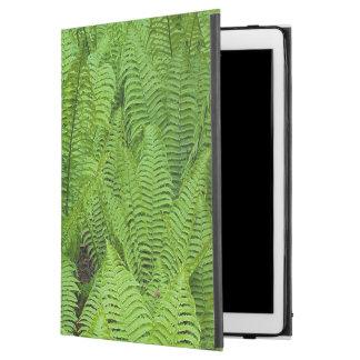 USA, Washington, Seattle, Washington Park iPad Pro Case