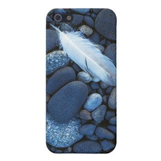 USA, Washington, Snake River Gravel Bar Case For iPhone SE/5/5s