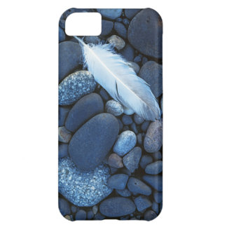 USA, Washington, Snake River Gravel Bar Cover For iPhone 5C