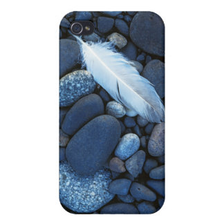 USA, Washington, Snake River Gravel Bar iPhone 4/4S Covers