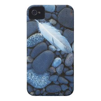 USA, Washington, Snake River Gravel Bar iPhone 4 Case-Mate Case