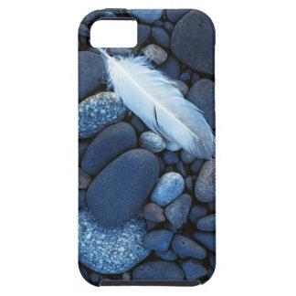 USA, Washington, Snake River Gravel Bar iPhone SE/5/5s Case