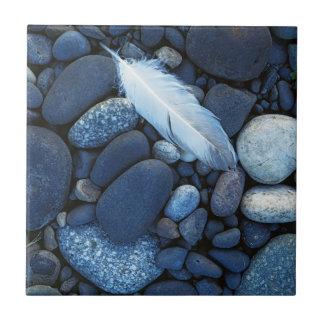 USA, Washington, Snake River Gravel Bar Tile
