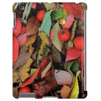 USA, Washington, Spokane Co., Hawthorn Leaves