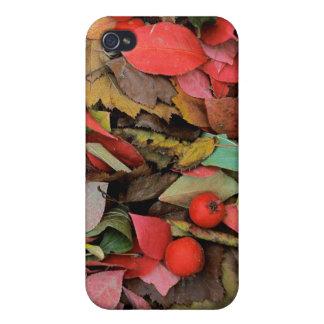 USA, Washington, Spokane Co., Hawthorn Leaves Cases For iPhone 4