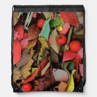 USA, Washington, Spokane Co., Hawthorn Leaves Drawstring Bag
