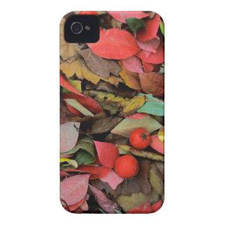 USA, Washington, Spokane Co., Hawthorn Leaves iPhone 4 Cover