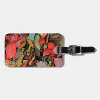 USA, Washington, Spokane Co., Hawthorn Leaves Luggage Tag