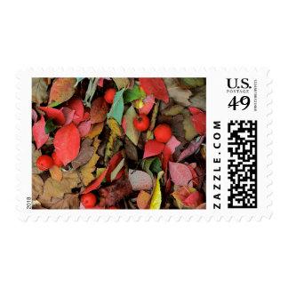 USA, Washington, Spokane Co., Hawthorn Leaves Postage