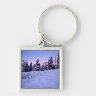 USA, Washington, Spokane County, Browne Mountain Keychain