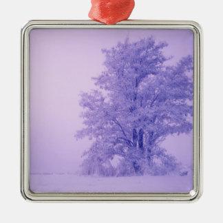 USA, Washington, Spokane County, Frosted Metal Ornament