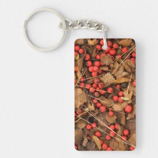 USA, Washington, Spokane County, Hawthorn Leaves Keychain