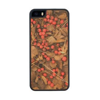 USA, Washington, Spokane County, Hawthorn Leaves Carved® Maple iPhone 5 Case