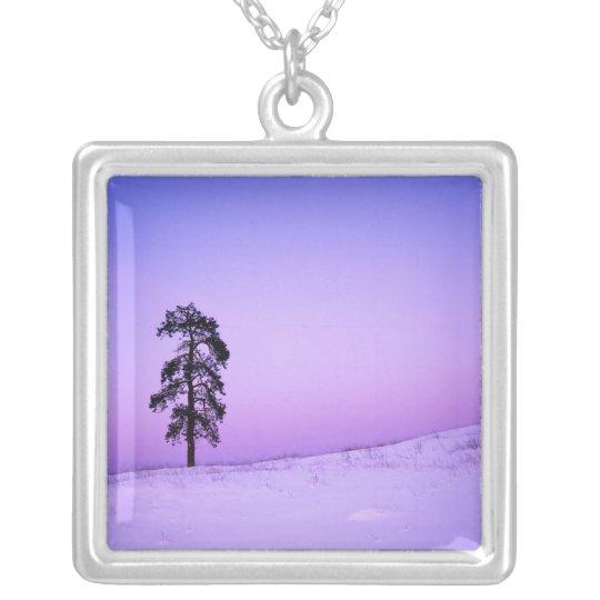 USA, Washington, Spokane County, Riverside Silver Plated Necklace