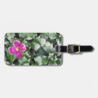 USA, Washington, Spokane County, Rockress Bag Tag