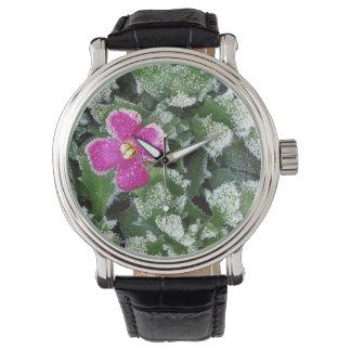 USA, Washington, Spokane County, Rockress Wristwatches