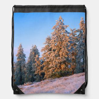 USA, Washington, Spokane County, Tower Mountain Cinch Bag