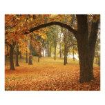 USA, Washington, Spokane, Manito Park, Autumn 2 Photo Print