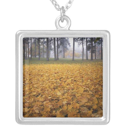 USA, Washington, Spokane, Manito Park, Autumn Silver Plated Necklace