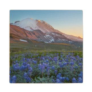 USA Washington State Alpine Lupine Maple Wood Coaster