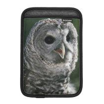 USA, Washington State. Barred Owl (Strix varia) iPad Mini Sleeve