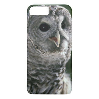 USA, Washington State. Barred Owl (Strix varia) iPhone 7 Plus Case