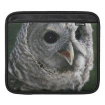 USA, Washington State. Barred Owl (Strix varia) Sleeve For iPads