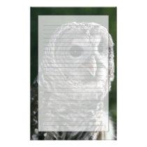 USA, Washington State. Barred Owl (Strix varia) Stationery