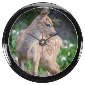 USA Washington State Blacktail Deer Fawn Aqua Clock