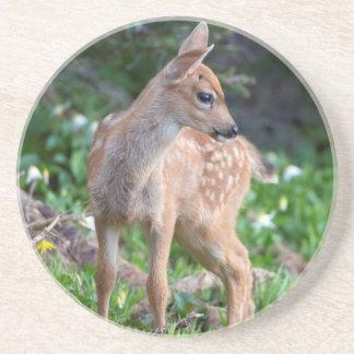 USA Washington State Blacktail Deer Fawn Drink Coaster