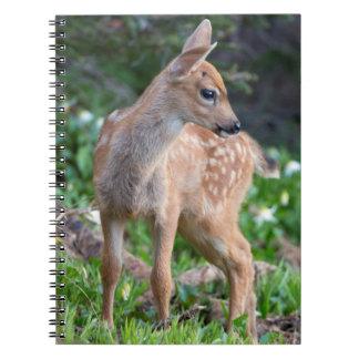 USA Washington State Blacktail Deer Fawn Note Books