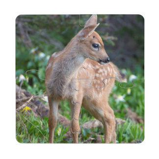 USA Washington State Blacktail Deer Fawn Puzzle Coaster