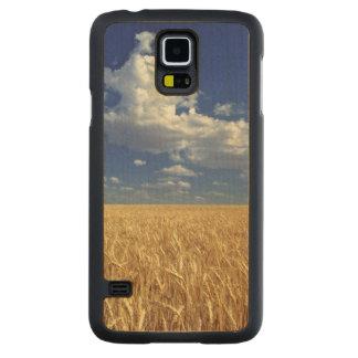 USA, Washington State, Colfax. Ripe wheat Carved Maple Galaxy S5 Case