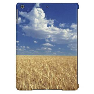 USA, Washington State, Colfax. Ripe wheat iPad Air Cover