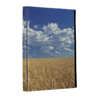USA, Washington State, Colfax. Ripe wheat iPad Cases